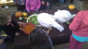 turkey day 026